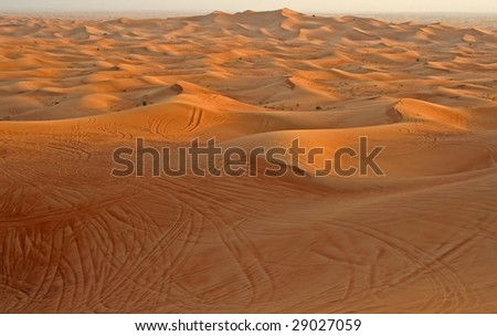 Desert of United Arabian Emirates - stock photo