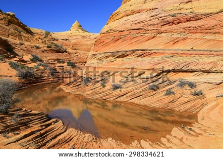 Desert pool at South Coyote Buttes, Arizona, USA. - stock photo