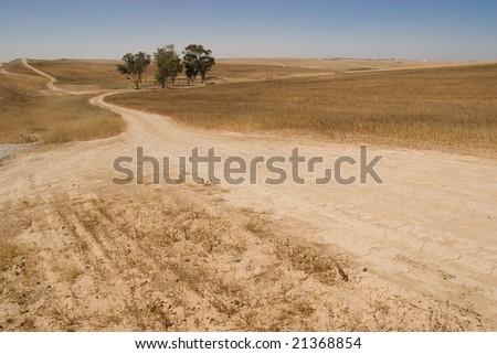 Desert Road - stock photo