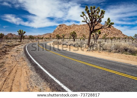 Desert road in Joshua Tree National Park, California. - stock photo
