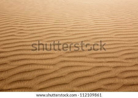 Desert sand dunes texture in Maspalomas Gran Canaria at Canary islands - stock photo