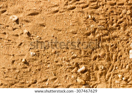 Desert sand texture from the sand in Egypt - stock photo