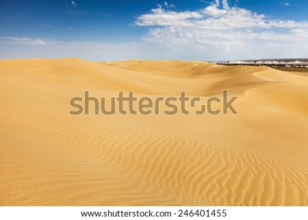 Desert Sands of Senek in the Kazakhstan. Previously, village houses transferred due to sands movement. Now desertification stopped by planted trees.