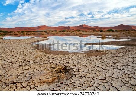 Desert scene with water in Namibia - stock photo