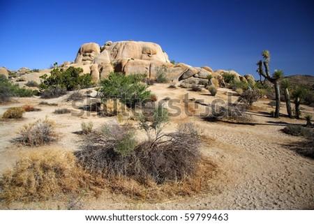 Desert scenery in Joshua Tree National Park - stock photo