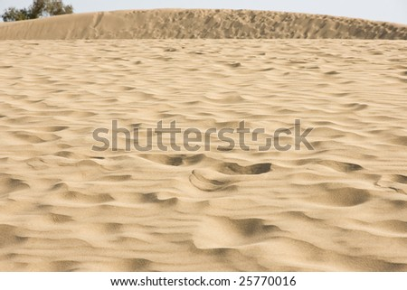 Desert view - stock photo