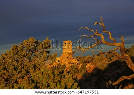 desert view watchtower and dead tree  in Grand Canyon National Park with landscape view