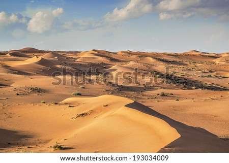 Desert Wahiba in Oman with green bushes and clouds on blue sky - stock photo