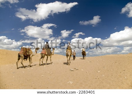 Desert walk - stock photo