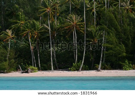 desert white sand beach - stock photo