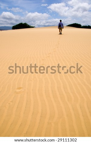 Desert with man going away - stock photo