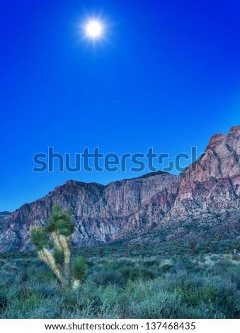Desert with red rock mountains early in the morning with a bright moon and a joshua tree - stock photo