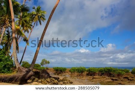 Deserted beach on the island of Vanua Levu, Fiji - stock photo