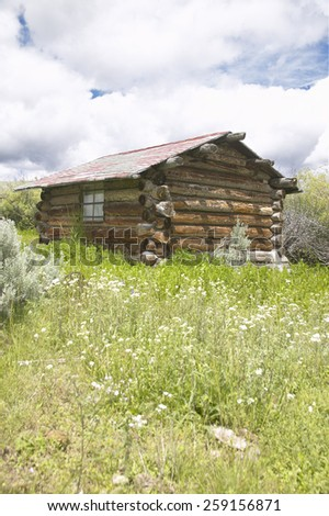 Deserted old homestead in summer in Centennial Valley near Lakeview, MT - stock photo