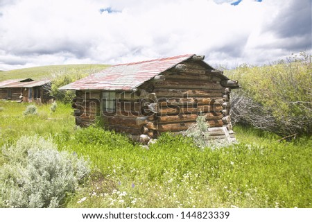 Deserted old hut in summer in Centennial Valley near Lakeview, MT - stock photo