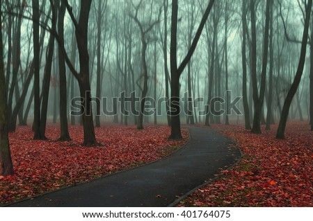 Deserted road in the autumn park in misty weather - autumnal somber landscape with bare trees and red fallen leaves on the foreground. Soft focus and creative filter processing - stock photo