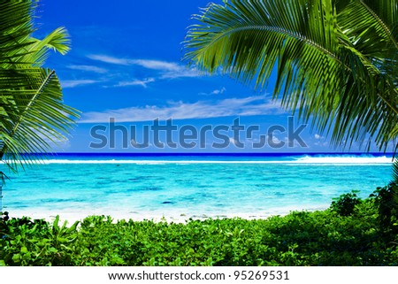 Deserted tropical beach lagoon framed by palm trees
