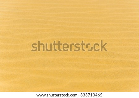 Desertic texture for backgrounds with waves in the sand