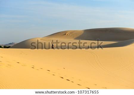 Deserts and Sand Dunes Landscape at Sunrise  - stock photo