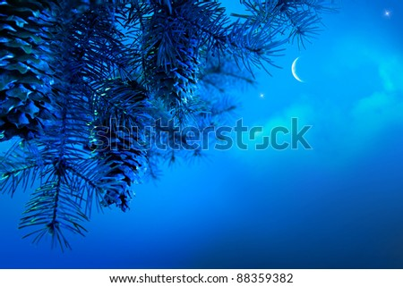 Design a Christmas card with a Christmas tree branch against blue night sky