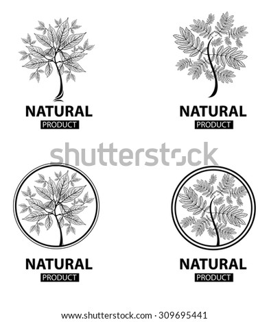 design elements for organic natural logos - stock photo