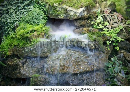 Design falls with beautiful steam, tropical  plants, water streams for a relaxation - stock photo