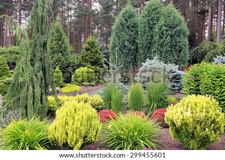 design garden landscape with mix of plants - stock photo