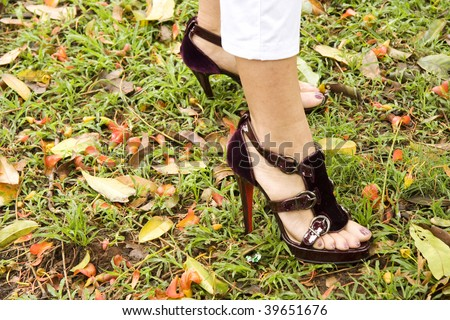 Designer sandals on a carpet of fallen leaves - stock photo