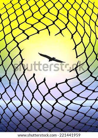 Desire for Freedom. Eagle escaping from cage as symbol and metaphor for human freedom - stock photo