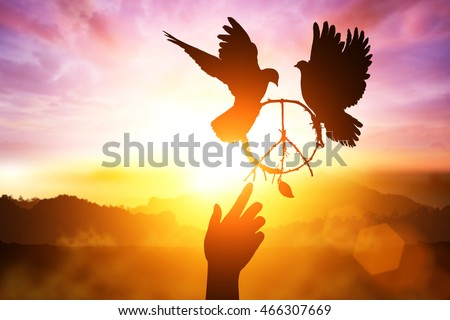 desire for peace concept with Silhouette of one hand desire to peace sign shape and dove flying on sunset sky for freedom and peace concept and international day of peace 2016 and hand helping