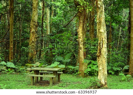 desk and chair in the forest for rest - stock photo