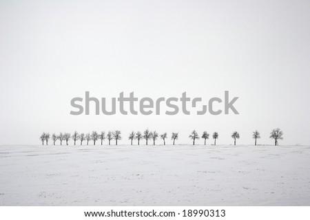 desolate field at winter - stock photo