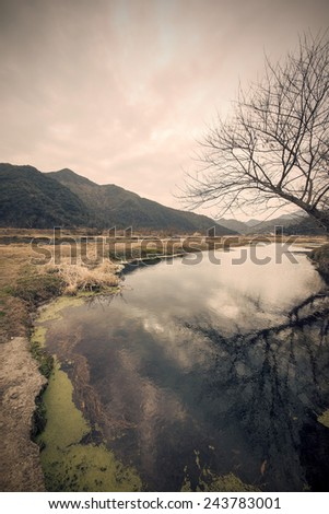 Desolate mountains river woods - stock photo