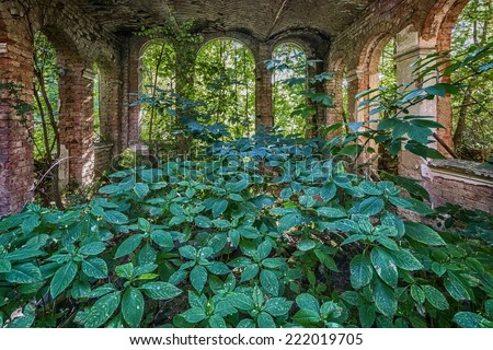 Destroyed room in the ruined palace of vegetation inside - stock photo