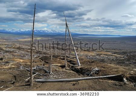 Destroying land - stock photo