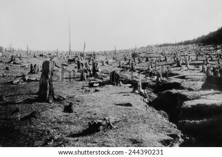 Destructive logging followed by fire completely destroyed this forest and caused soil erosion. Ca. 1940. - stock photo