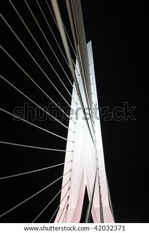 Detail Erasmus bridge in Rotterdam the Netherlands by night
