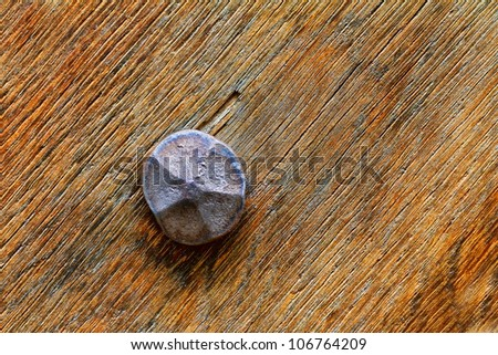 detail forged nail in wood doors - stock photo