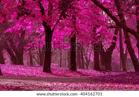 detail from the park in various colors, dreamy looks. local focus - stock photo