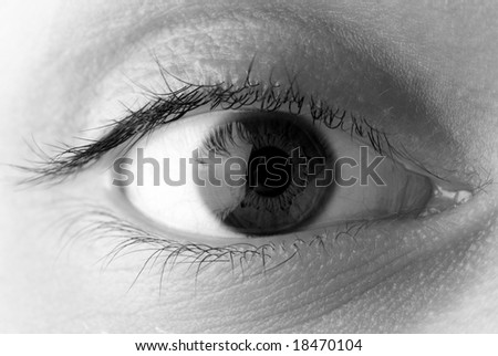 detail macro of eye - stock photo