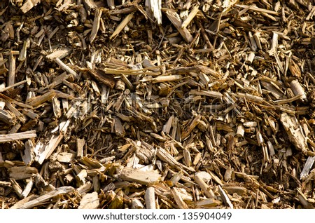 Detail of a big pile of dried driftwood. - stock photo