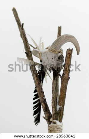 Detail of a Totem whit a skull. - stock photo