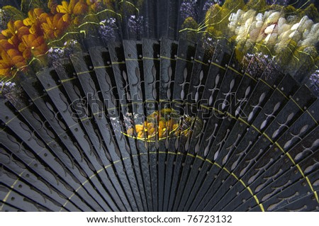 Detail of a typical spanish fan - stock photo