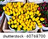 Detail of Amsterdam flowers market: the best tulips of the world - stock photo