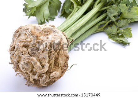 detail of celery root plant on white background