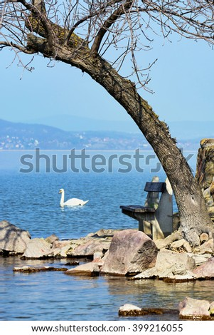 Detail of coast at Lake Balaton, Hungary - stock photo