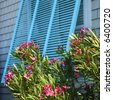 Detail of exterior window on home with flowering bush. - stock photo