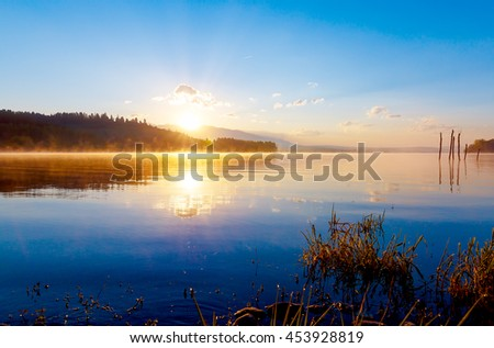 detail of grass halm at a lake in magical morning time with dawning sun - stock photo