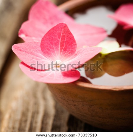 Detail of hortensia petals floating on bowl of water - stock photo