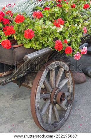 Detail of old wooden cart with geranium flowers
